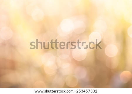 bokeh blurry natural abstract yellow background - stock photo