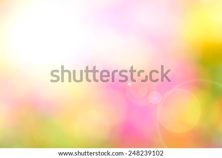 Bokeh lit by the light and the sun - stock photo