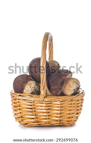 Boletus edulis in a wicker basket isolated on a white background - stock photo