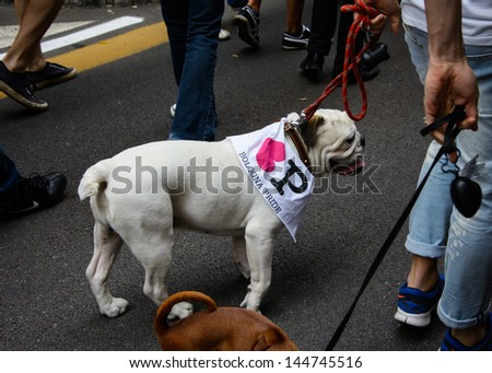 BOLOGNA, ITALY - JUNE 29 - Gay Pride on June 29, 2013. Dog wearing parade flag.