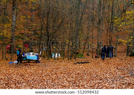 BOLU, TURKEY - NOVEMBER 16, 2014: People camping in forest with fallen leaves, autumn season in Yedigoller. Yedigoller is national park in Bolu, Turkey.