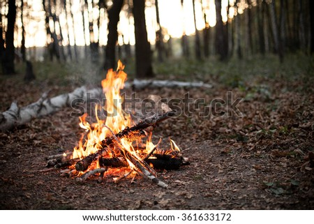 Bonfire in the forest at sunset