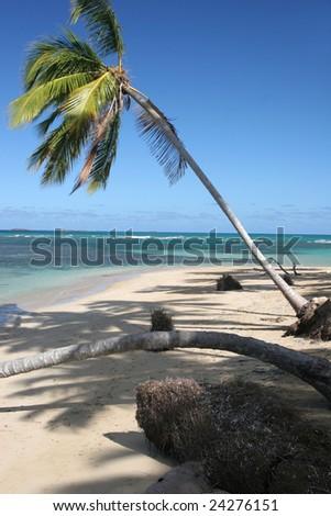 Bonita beach, Las Terrenas, Samana peninsula, Dominican Republic - stock photo