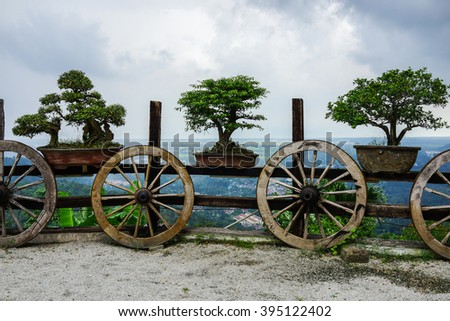 Bonsai Trees on Wheelbarrow fence. - stock photo