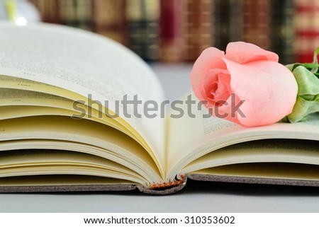 Book and pink rose - stock photo