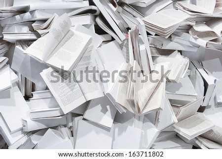 Book Display in a Store Front Window - stock photo