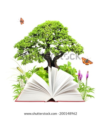 Book of nature. Isolated on white background - stock photo