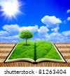 Book of nature with sky on the background - stock vector
