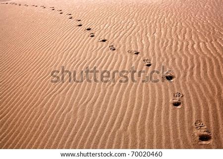 Boot prints in the desert sand - stock photo