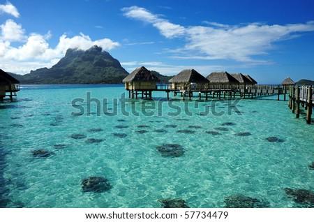 bora bora , the paradise - stock photo