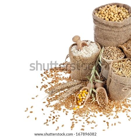 Border frame of Corn kernel seed meal and grains in bags isolated on a white background - stock photo