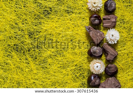 Border from autumn elements: chestnuts, pieces of bark, dried flowers on a yellow background sisal - stock photo