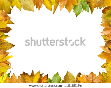 Border of autumn leaves.White isolated copy space.