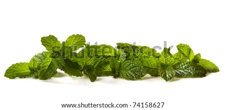 Border of fresh mint leaves, isolated on white.