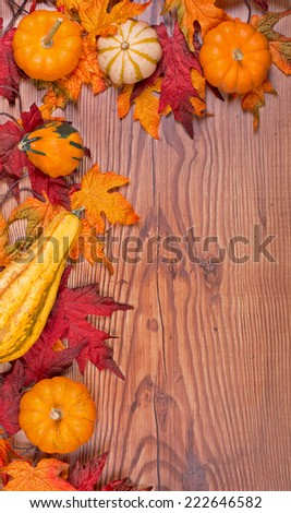 Border of gourds against a wood background