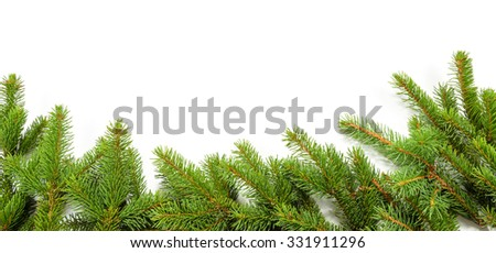 border of green spruce branches - stock photo