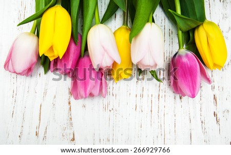 border of pink and yellow tulips  on a wooden background - stock photo