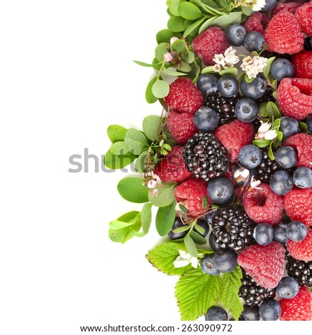 Border of tasty berries with flowering plant, top view, surface,  isolated on a white background - stock photo