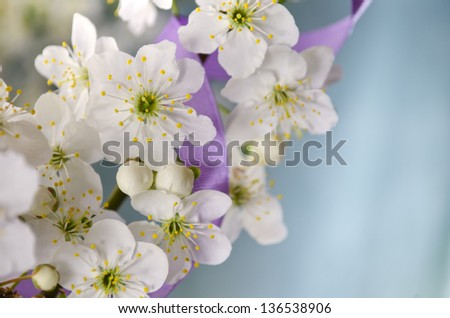 border of the cherry blossom flowers with ribbon