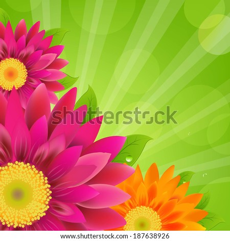 Border With Colorful Gerbers - stock photo