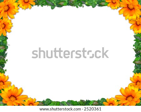Border  with small green leafs and orange sunflowers - stock photo