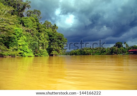 Borneo. Kinabantangan - stock photo