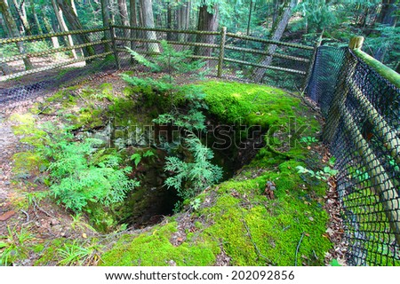 Boston and North Mining Shaft at Porcupine Mountains Wilderness State Park of Michigan - stock photo