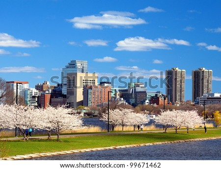 Boston in the spring with cherry blossoms at Charles River Esplanade. - stock photo