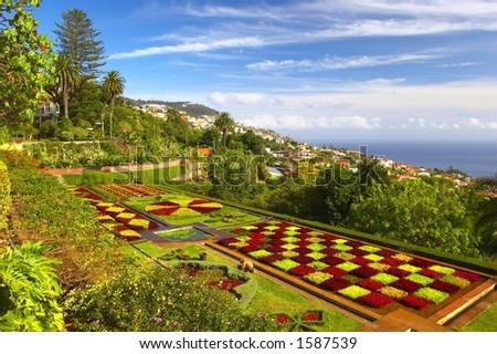 Botanical garden in Portugal, Madeira, Funchal, - stock photo
