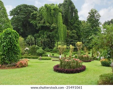Botanical Garden, Kandy, Sri Lanka - stock photo