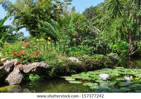 botanical garden La Mortella,Ischia island - stock photo
