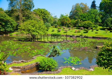 Botanical Garden landscape in Peradeniya, Kandy, Sri-Lanka - stock photo