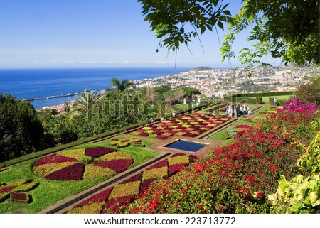 botanical garden of funchal,madeira island,portugal - stock photo