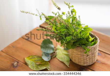 botany, summer, gardening and herbs concept - close up of fresh melissa in wicker basket and leaves on wooden table - stock photo