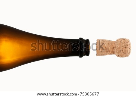 Bottle and cork - stock photo