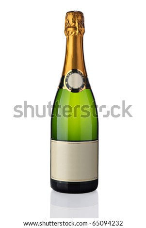 Bottle of champagne - stock photo