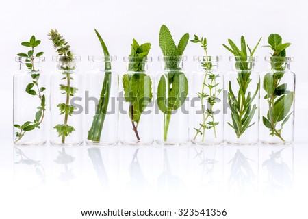 Bottle of essential oil with herb holy basil leaf, rosemary,oregano, sage,aloe vera and mint on white background.