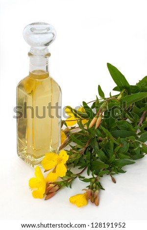 Bottle of oil with fresh evening primrose - isolated - stock photo