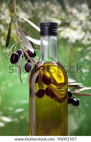 Bottle of olive oil in the olive grove - stock photo