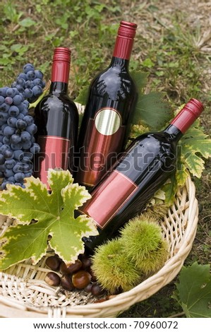 Bottle of red wine in the basket with some autumn fruits. - stock photo