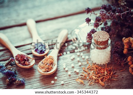 Bottle of white homeopathy globules, wooden spoons and dry healthy herbs. Selective focus. Retro styled. - stock photo