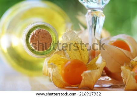 bottle of  white wine and physalis fruits - stock photo