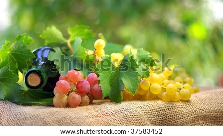 Bottle of wine and grappes. - stock photo