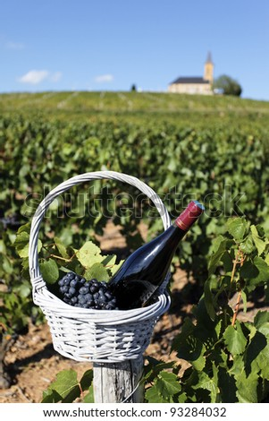 bottle of wine in basket in front of church - stock photo