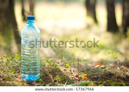 bottle with blue water in wood