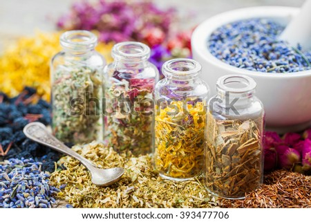 Bottles of healing herbs and mortar with dry lavender flowers, herbal medicine. - stock photo