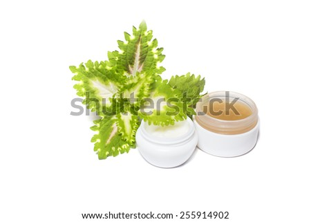 Bottles of organic homemade cream and fresh leaves