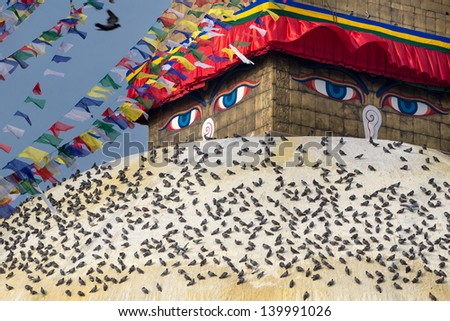 Boudhanath Stupa, one of the main landmark in Kathmandu surrounded by birds early in the morning, Nepal - stock photo
