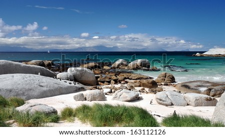 Boulders Beach Nature Reserve, near Cape Town, Western Cape, South Africa. - stock photo