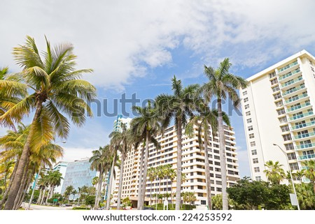 Boulevard with tall palms and modern buildings in Miami Beach, Florida. Buildings and trees on a sunny afternoon in popular vacation destination. - stock photo